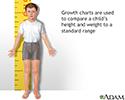 Height/weight chart